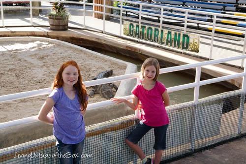 Gatorland Orlando-01796