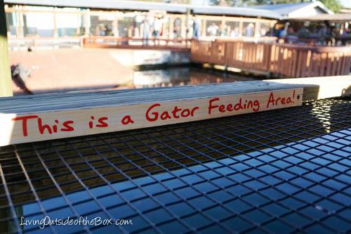Gatorland Orlando-01851