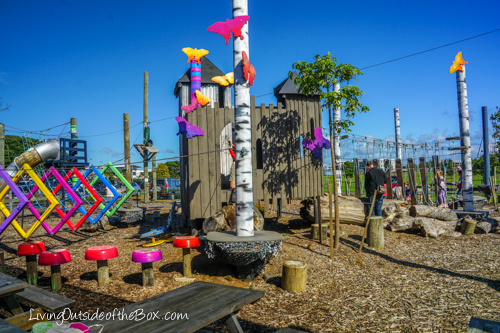 rocket-ropes-butterfly-creek-auckland-01537