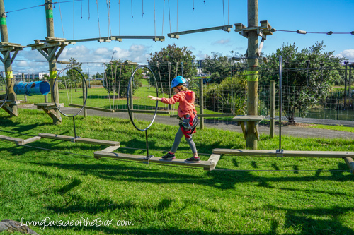 rocket-ropes-butterfly-creek-auckland-01553