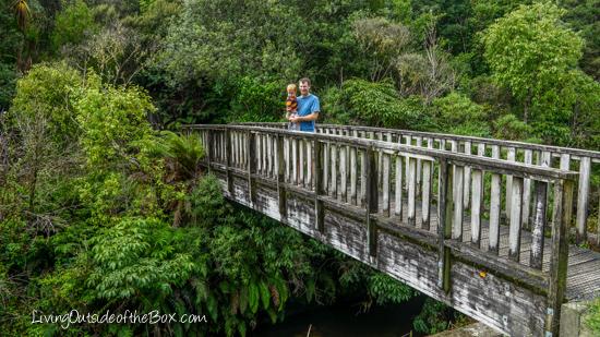 mangapohue-natural-bridge-hike-with-kids-19