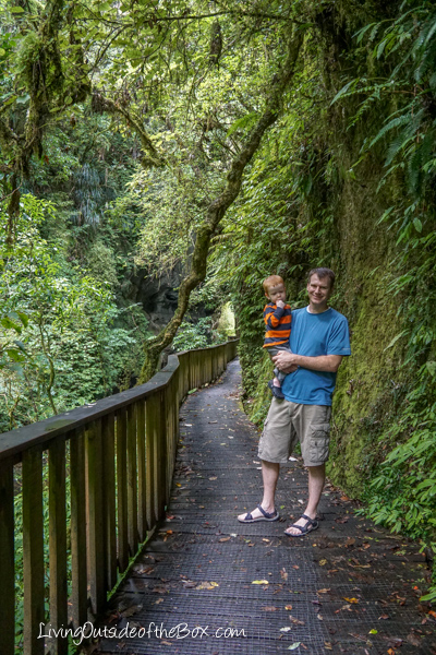 mangapohue-natural-bridge-hike-with-kids-31