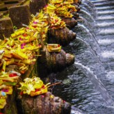 Holy Spring Water Temple of Bali